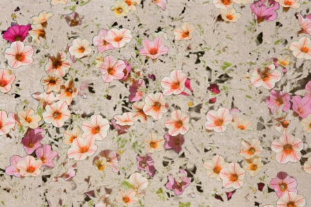 disorderly: Abstract vintage background with a disorderly lot of small  Hairy Pink Flax flowers and abstract spots Stock Photo