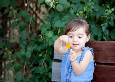 Cute toddler girl playing with the first yellow leaf on an old bench in the garned Stock Photo - 23574408