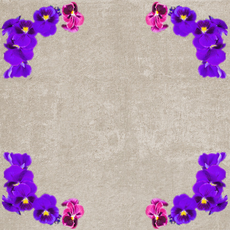 Square vintage textured frame with violet pansy flowers photo