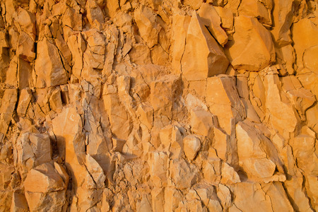 Whole surface limestone yellow rock background Stok Fotoğraf