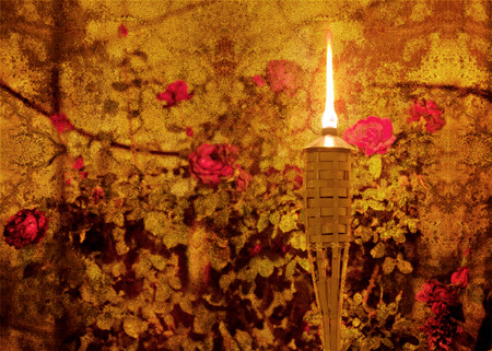 cloak and dagger: Vintage style textured picture of glowing torch in a flower garden (texture added, grunge effect picture, retro style effect added)