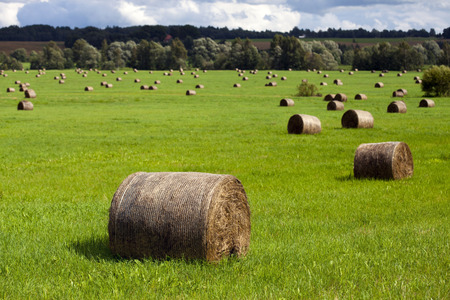 CLoseup on a large haystack on the edge of the field