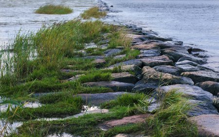 Grassed-over natural stony breakwater (tinted image, cold tint) Stock Photo