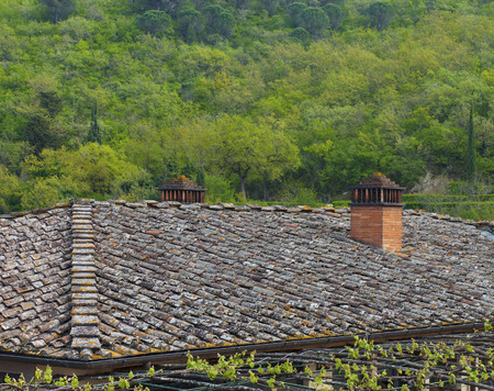 Vintage tiling roof with two chimneys facing a forest Stock Photo