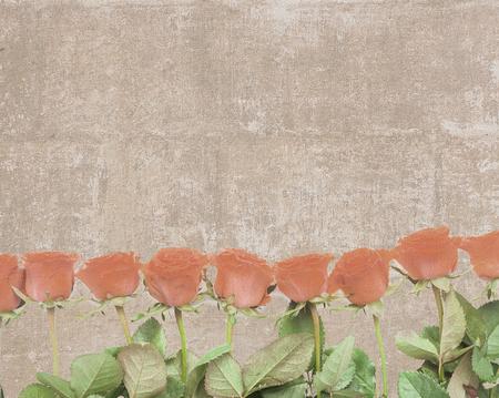 Piastrelle arancioni. come valorizzare il bagno con le piastrelle