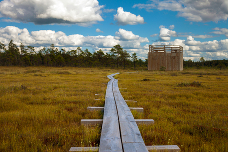 Tourist pathway and viewpoint on the swamp in Nigula nature reserve, Estonia