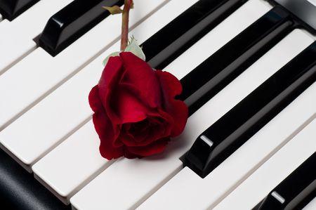 letras musicales: Una �nica rosa situada encima de un teclado de piano de Roja hermosa