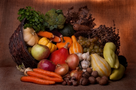 Fall cornucopia setting Stock Photo - 7979019