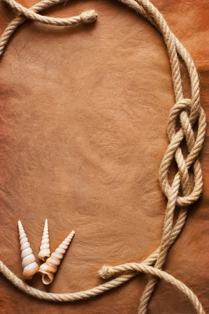 Aged Rope and seashell on the old paper background