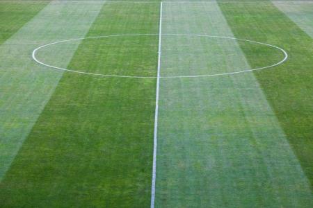 football pitch: green natural grass of a Football soccer field Stock Photo