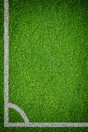 Closeup image of natural green grass soccer field Stock Photo