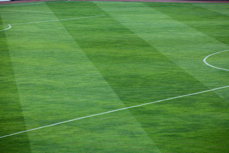 onward: Vibrant green grass filling a field.  The grass is divided into thick vertical lines with one line containing a deep shade of green grass and the other line a lighter shade.  The lines alternate between the two shades and stretch onward. Stock Photo