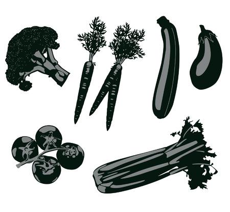 vegetable illustration set Vector
