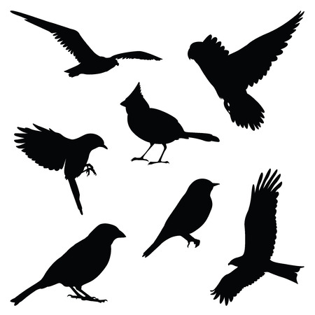 bird silhouette illustration set Vectores