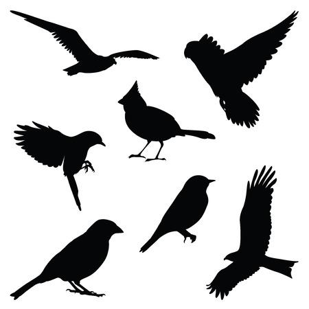 bird silhouette illustration set Stock Illustratie