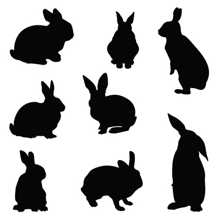 silhouette lapin: Lapin illustration silhouette ensemble