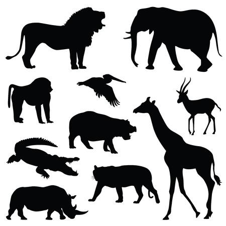 safari animal silhouette illustration set