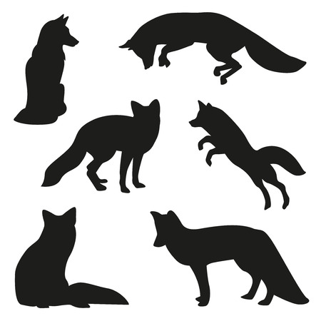 fox illustration set Vectores