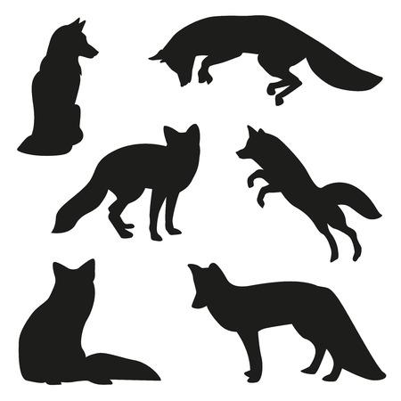 fox illustration set Vectores