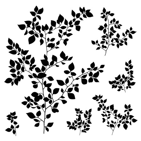 branches leaves silhouette set