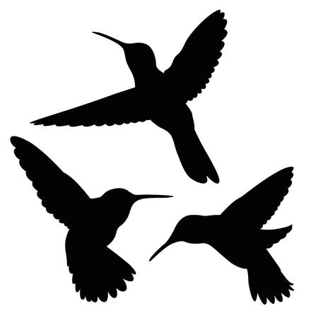 naturally: hummingbird silhouette set Illustration