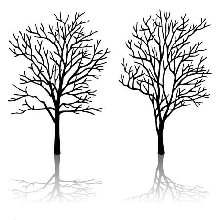 backlit: tree silhouette set