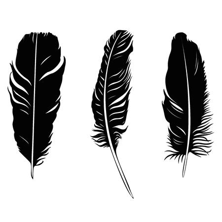 feather illustration silhouette set Ilustracja