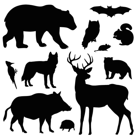 forest animal vector illustration set Stock Illustratie