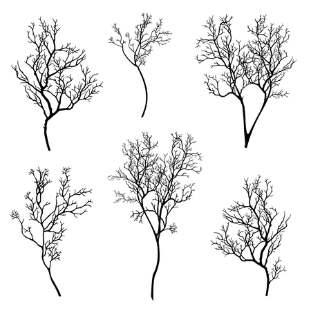 outs: tree branch silhouette set