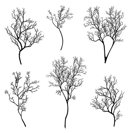 branch: tree branch silhouette set