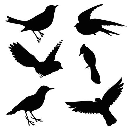 vogel silhouet set Stock Illustratie