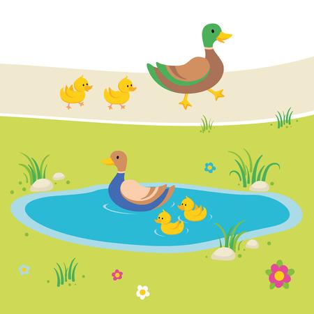 ducks in pond illustration