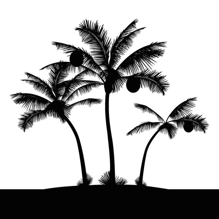 tropical island beach palm trees 일러스트