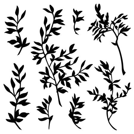 Takken silhouet vector set Stock Illustratie