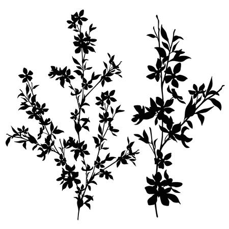 Branch silhouette set illustration. Ilustrace