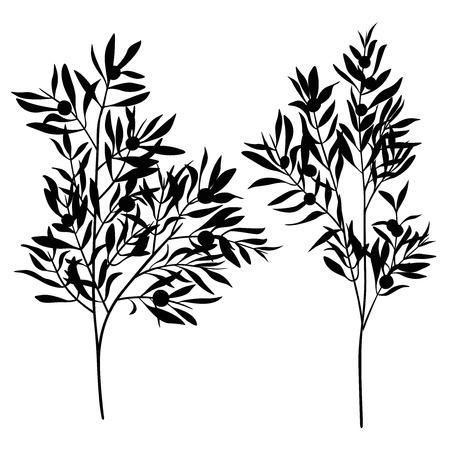 Takken bladeren olijf silhouet set