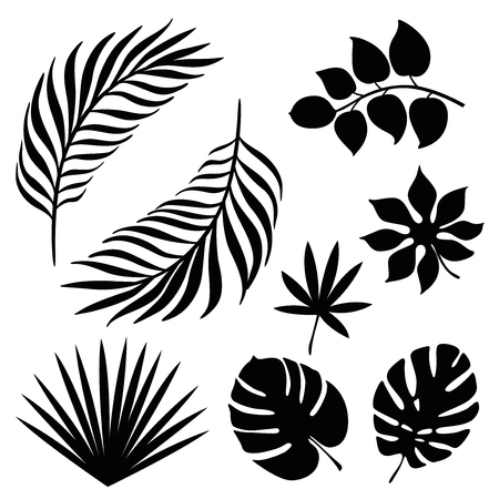 Tropical palm leaves silhouette set