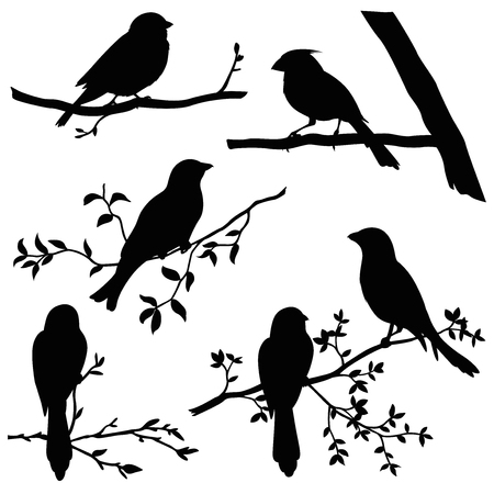 birds on branches silhouette set Vectores