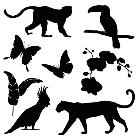animals jungle silhouette set