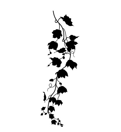 hanging plant leaves silhouette