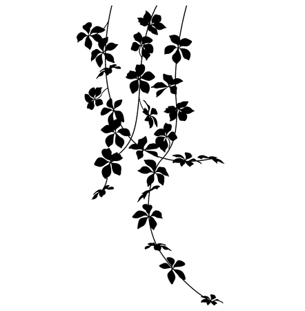 hanging plant silhouette