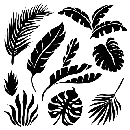 Tropical leaves silhouette set isolated on a white background Illusztráció