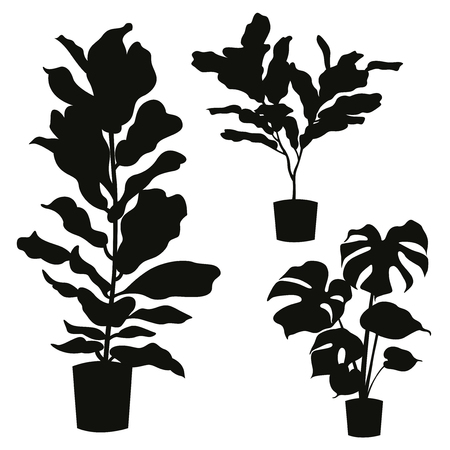House plant silhouette set isolated