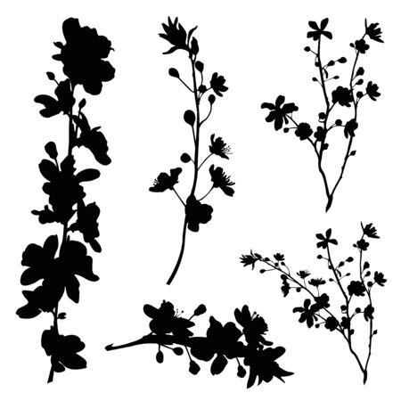 conjunto de silueta de rama de flor de cerezo