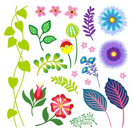 floral fun colorful illustration elements set
