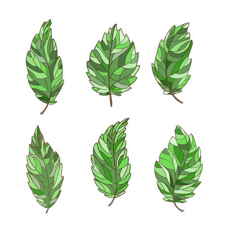 dcor: Set of decorative, abstract leaf, hand-drawn and painted.