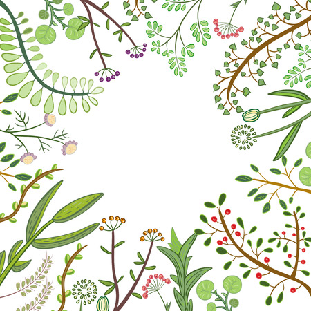 Decorative frame of hand-drawn twigs with leaves, berries and flowers. Vector graphics. Archivio Fotografico - 127577124