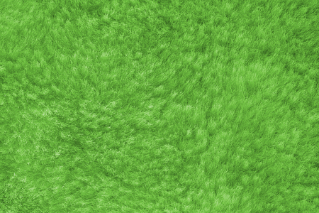 green shaggy skin of an animal closeup texture, Fur Texture.