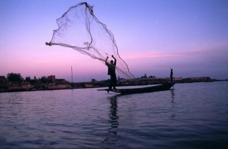hengelsport: gooien visnet bij zonsopgang Stockfoto