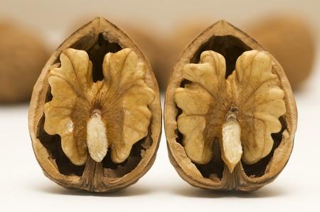 twee walnut shells Stockfoto